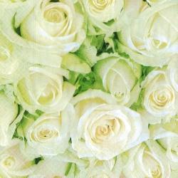 Svatební ubrousky - Bílé růže