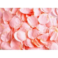 OKVĚTNÍ PLÁTKY - růžová