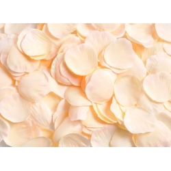 Okvětní plátky růží meruňková