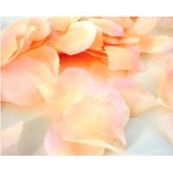 Okvětní plátky růží lososová