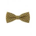 Žlutý pánský motýlek + kapesníček